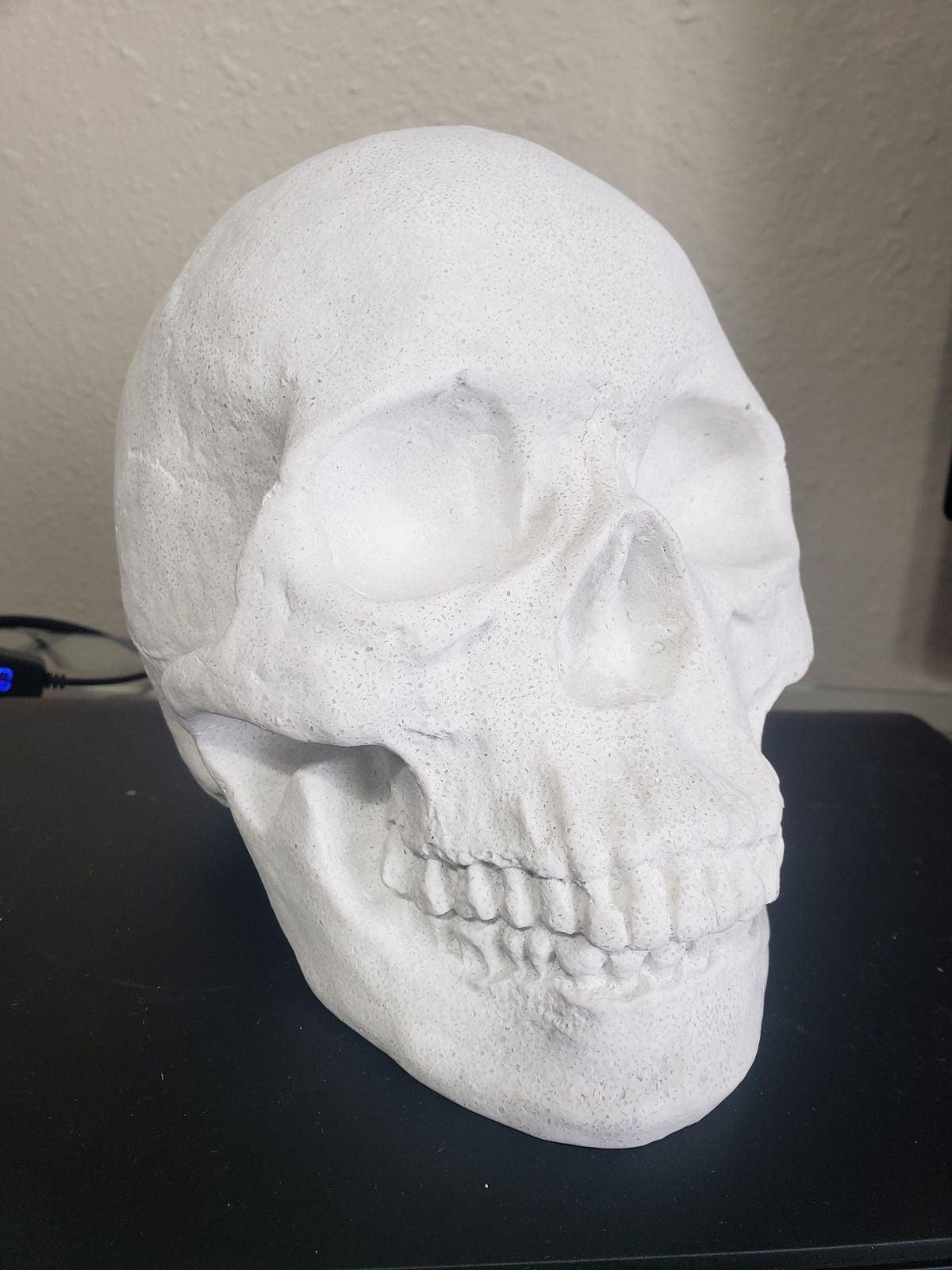 Halloween resin skull