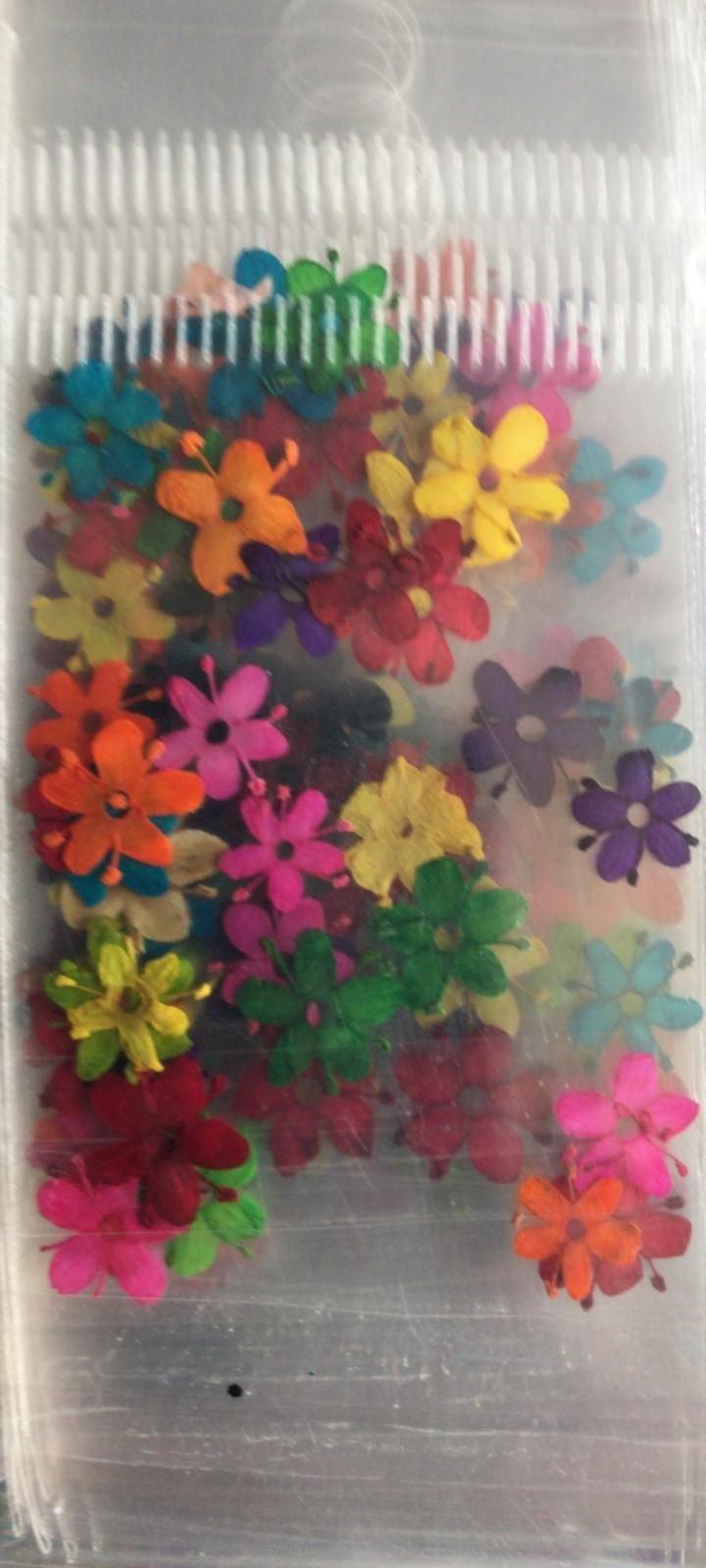 600 Dried flower
