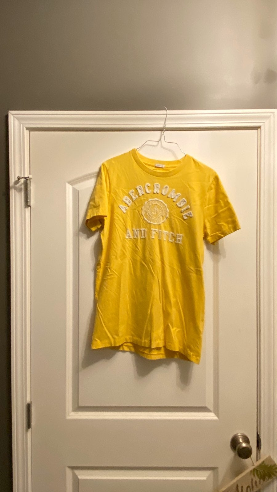 Mens Abercrombie & Fitch shirt