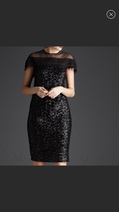 Mignon Sheer Sequin Dress Size 6 New