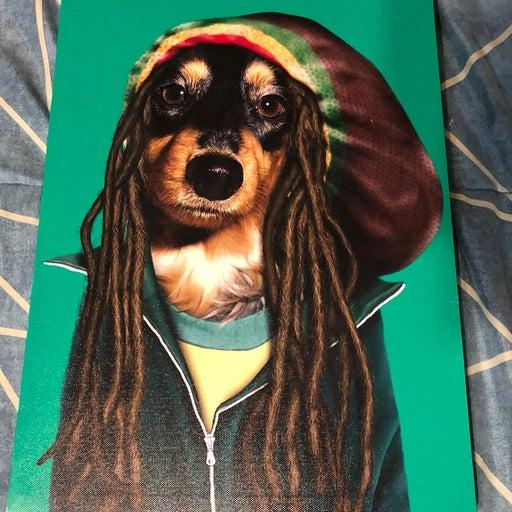 Pets Rock Bob Marley Canvas