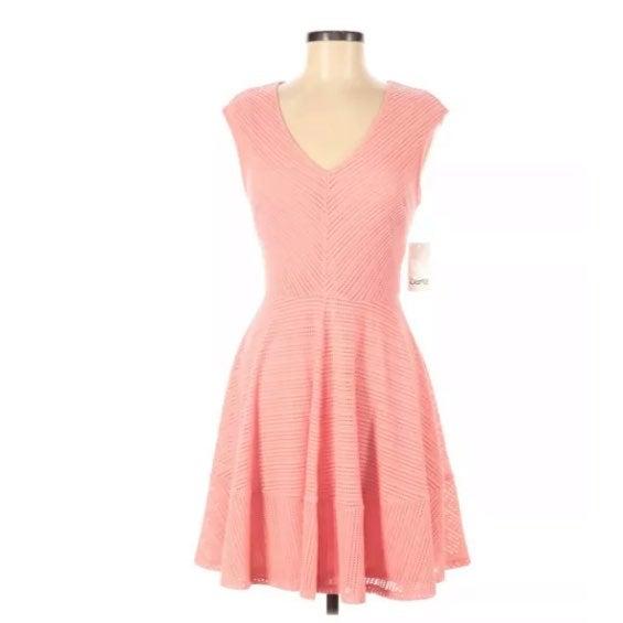 NWT Bar III Fit & Flare Dot Dress