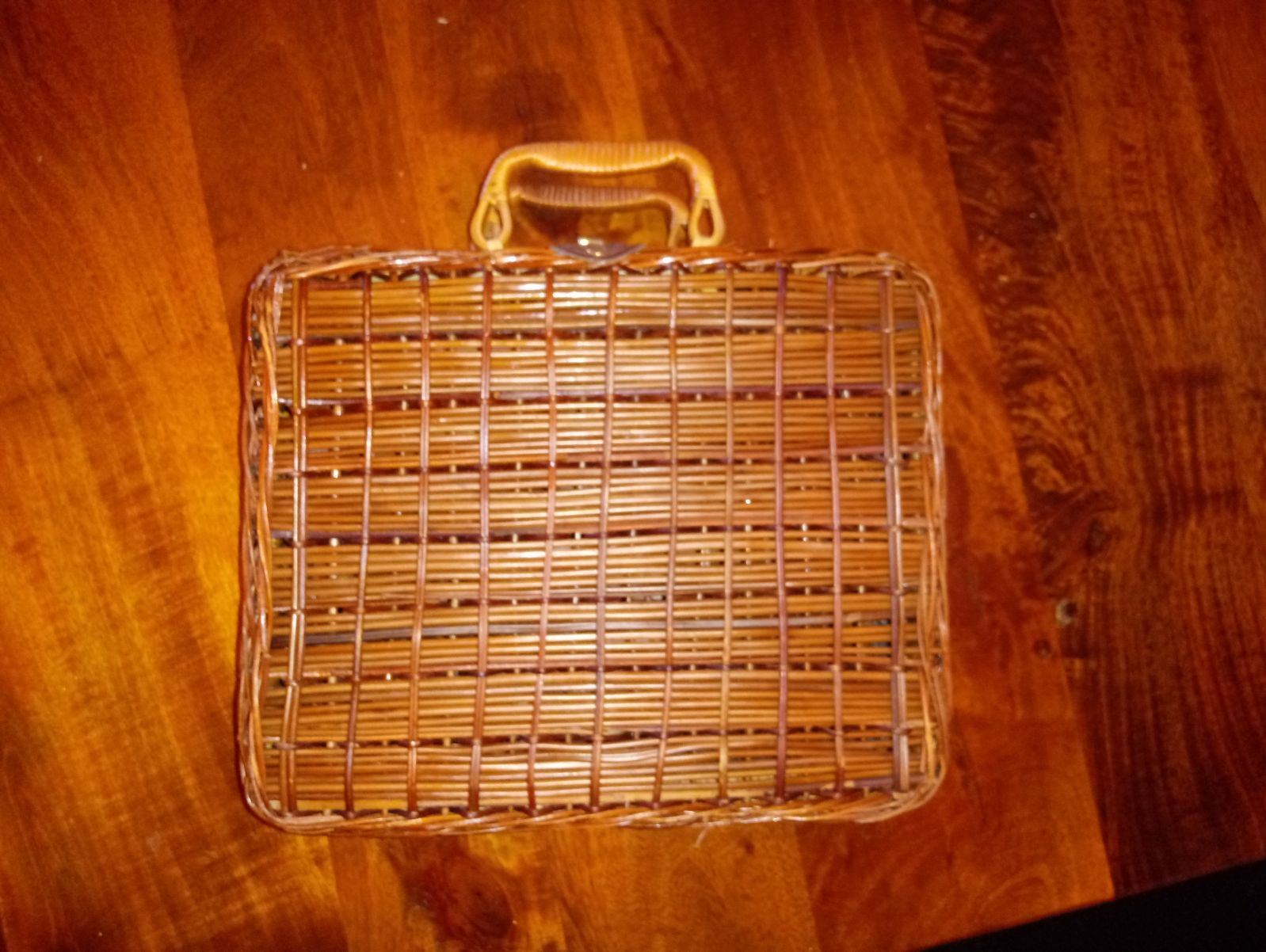 Branch/Reed Woven Hand Bag/Luggage Bag