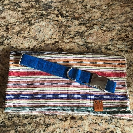 Zaley Dog Collar & Moosewears Bandana