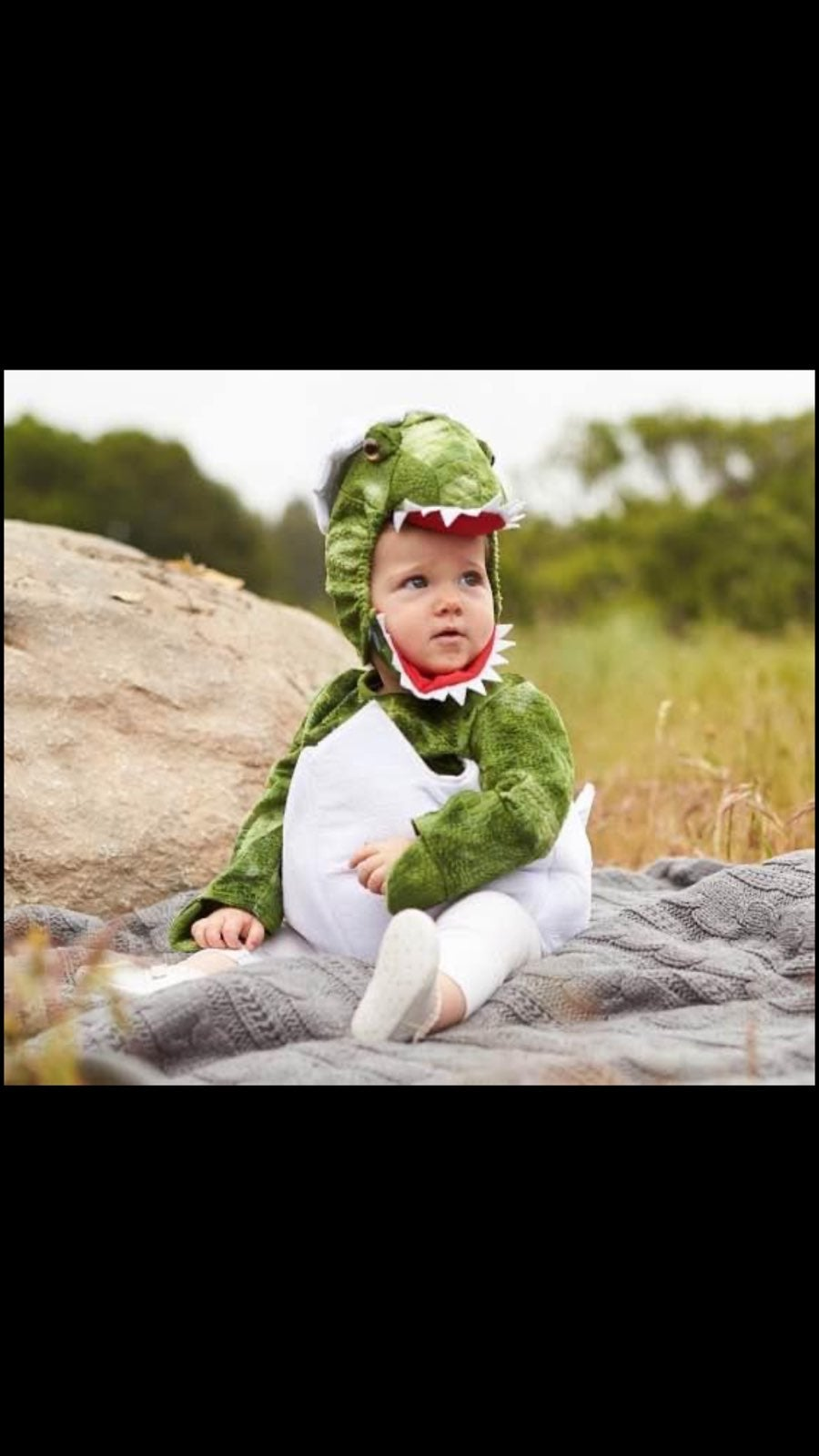 Potter Barn baby dinosaur costume 12-18