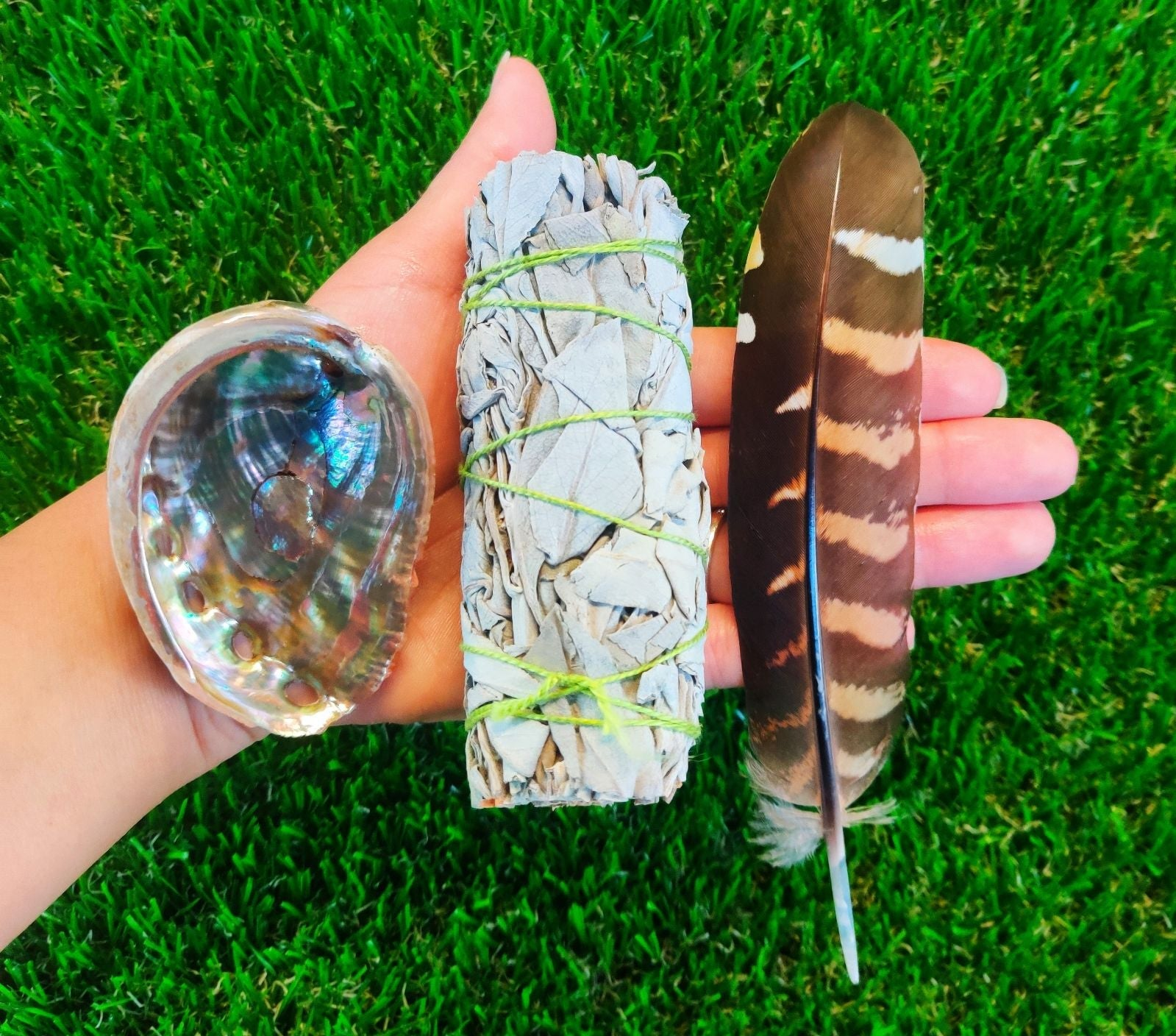 White sage smudge kit mini abalone shell