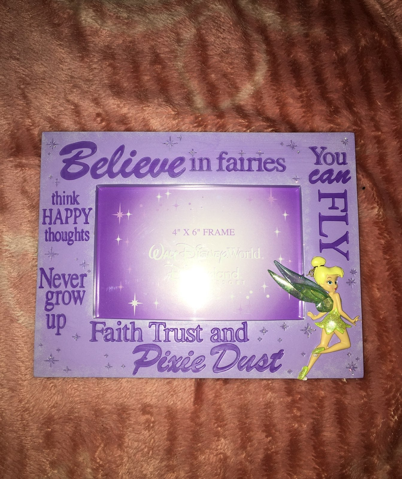 Disney TinkerBell Picture Frame