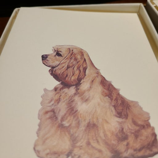 2 note cards, cocker spaniels