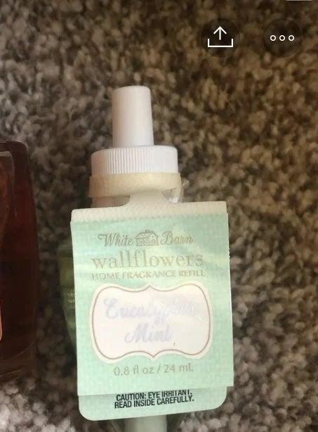 Wallflower refills