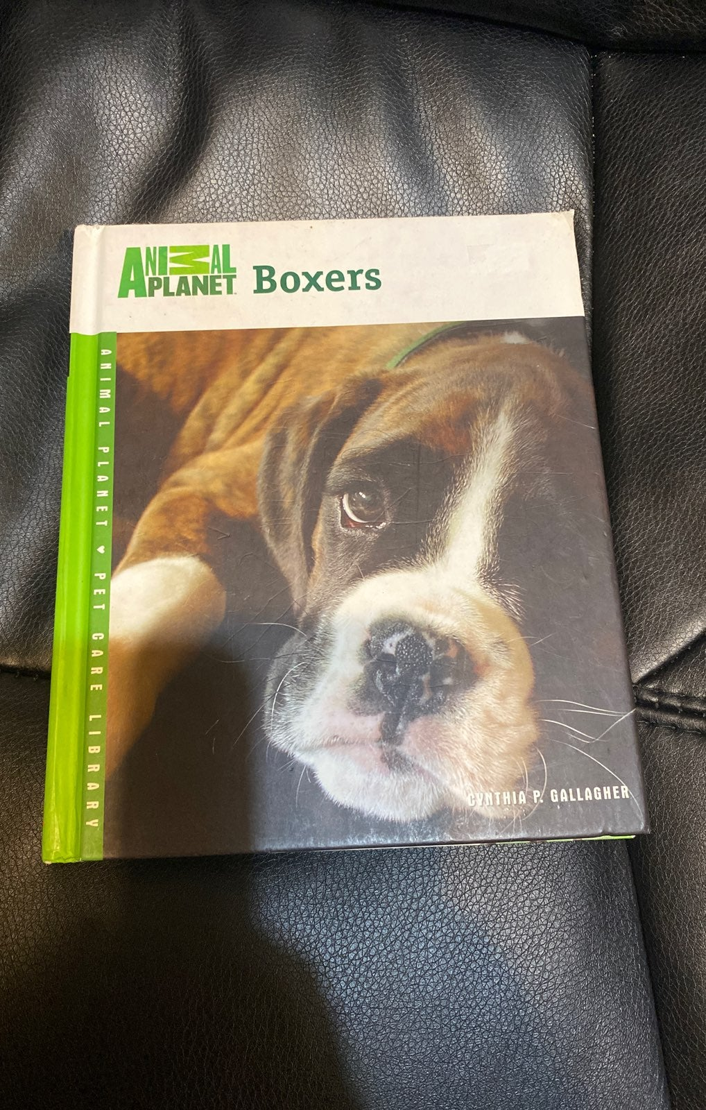 Animal planet Boxers book