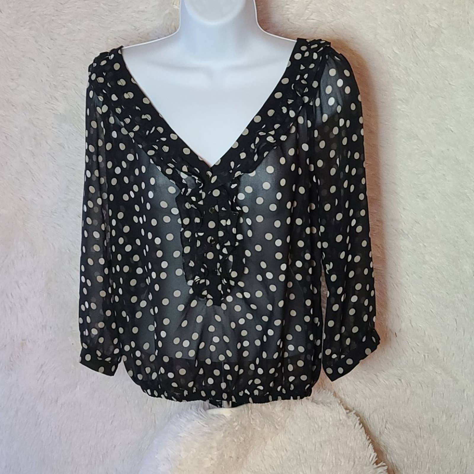 Zara Sheer Polka Dot Top Large