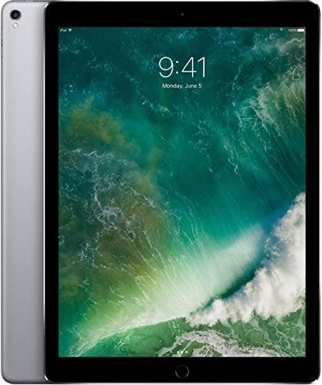 iPad Pro 1st generation Space Gray 256 G
