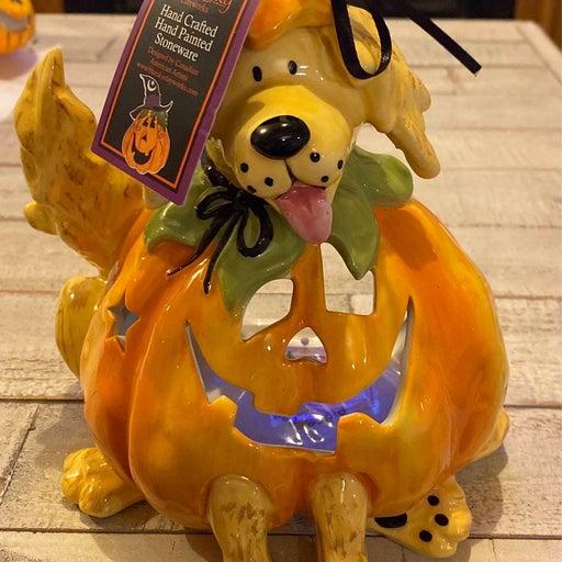 blue sky halloween pumpkin dog