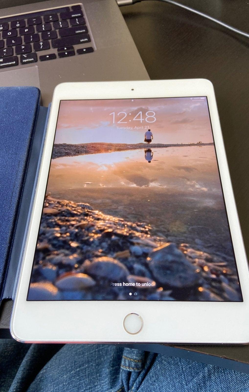 iPad mini 4th generation Silver 128 GB
