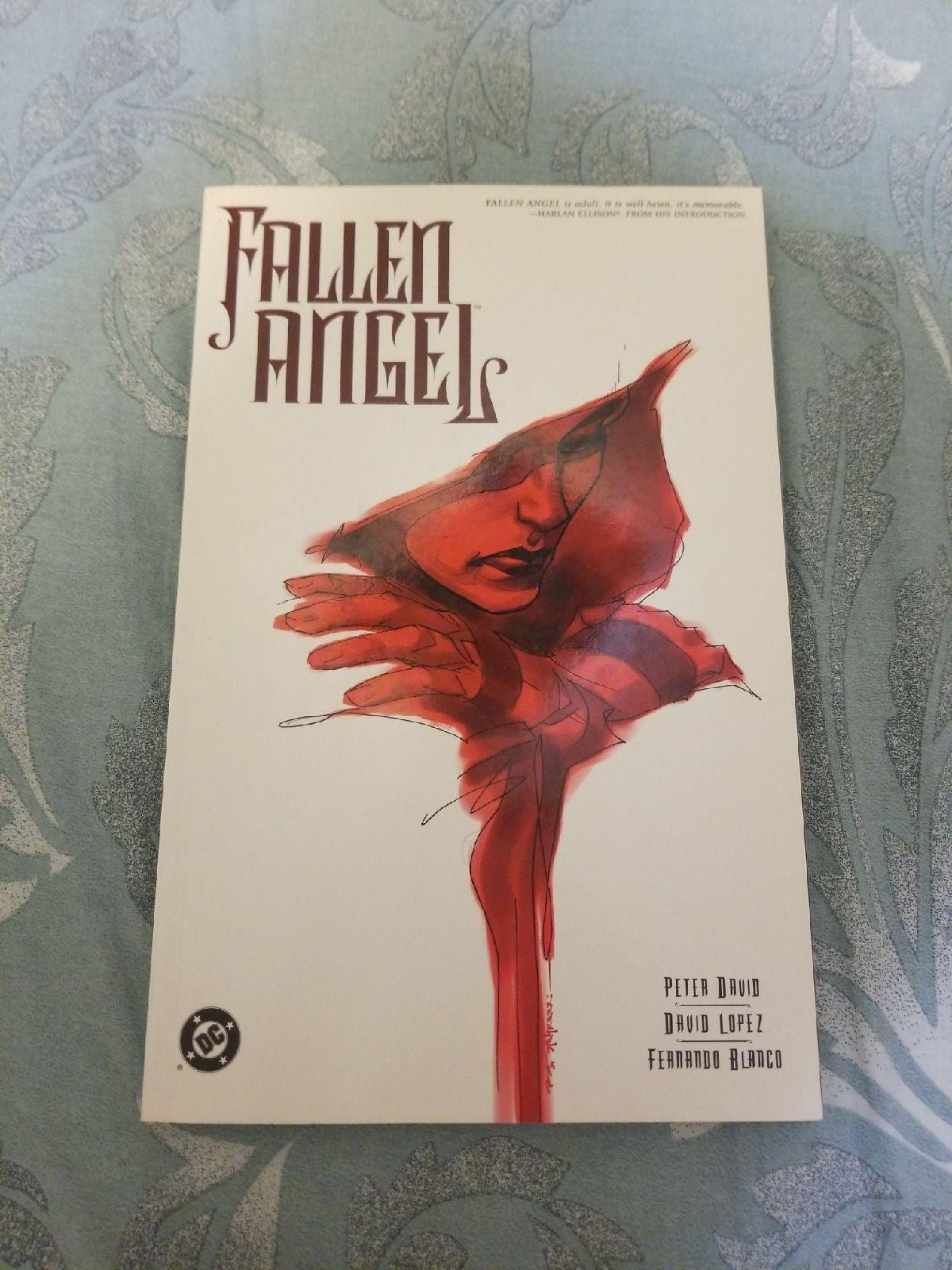 Graphic novel fallen angel vol 1 dc