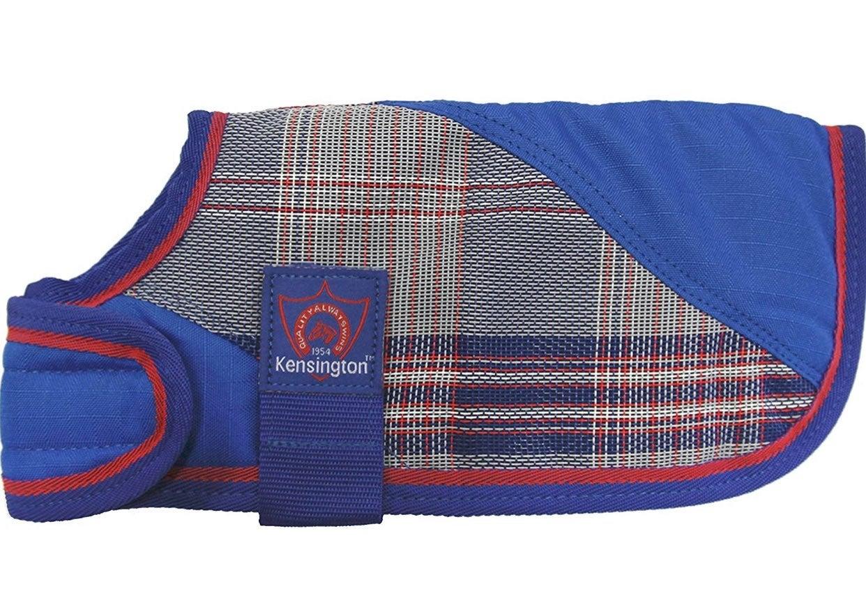 Kensington Dog Coat XS