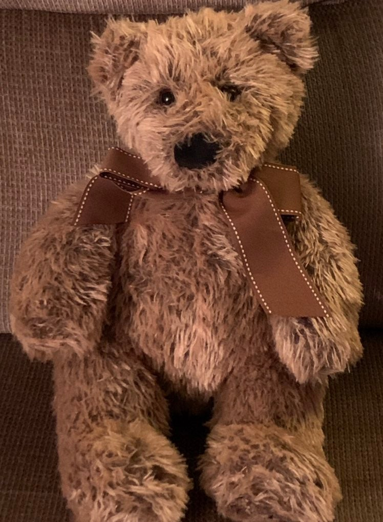 Toys R Us Plush Bear