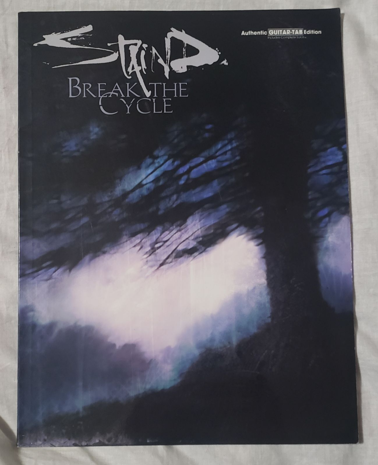 Staind Rock Band- Break The Cycle Guitar