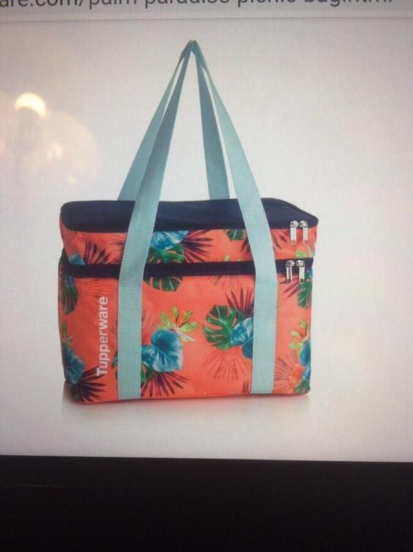 Huge Tupperware installation/picnic bag.