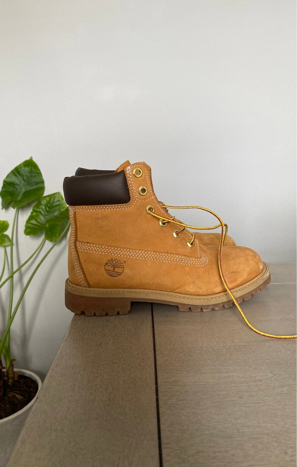 TIMBERLAND 6 Inch Waterproof Boots