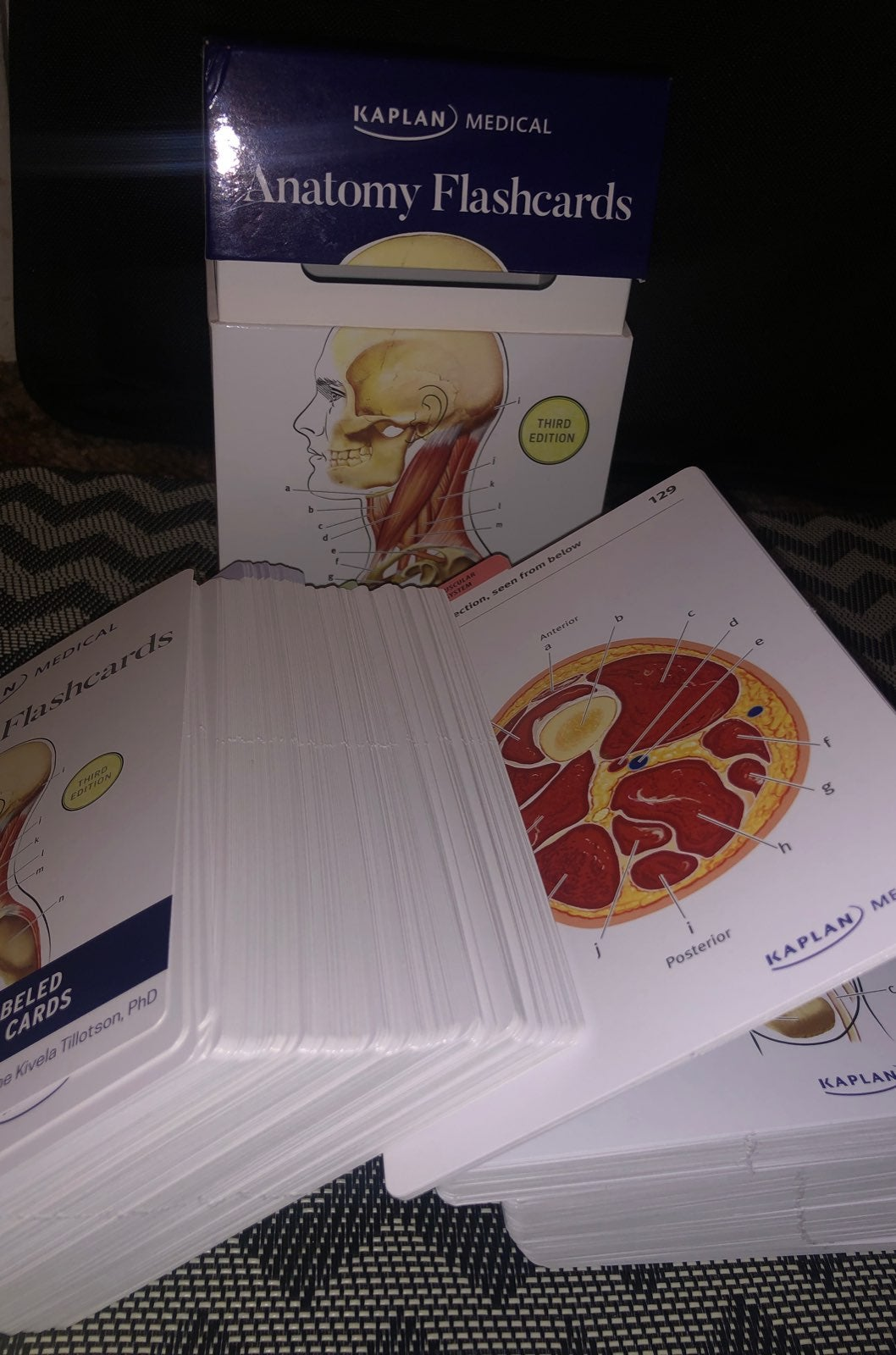 Kaplan Medical Anatomy Flashcards