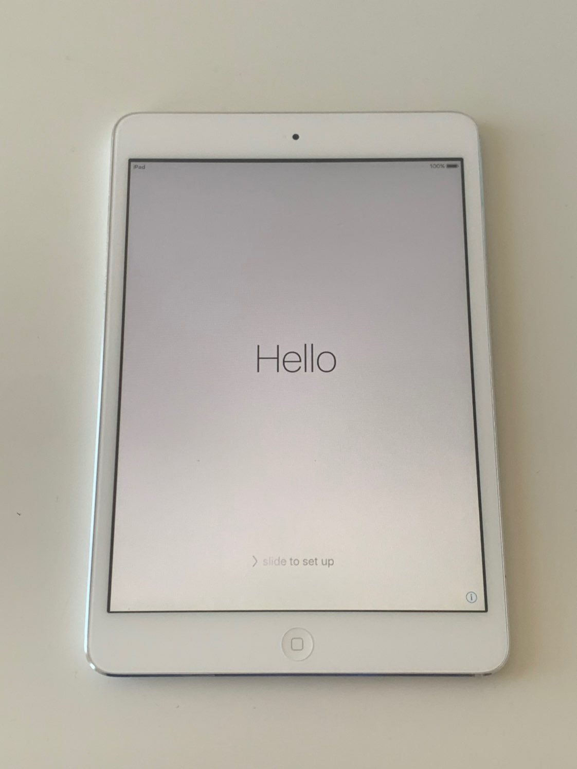 iPad Mini 1st Generation White & Silver