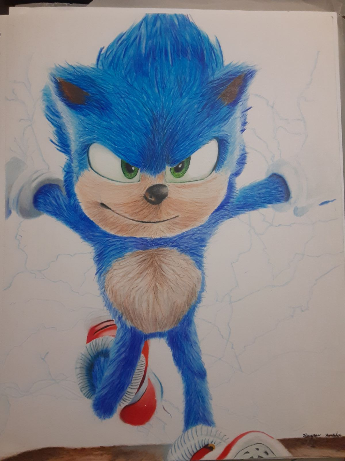 One of a kind Hand made sonic the hedgeh
