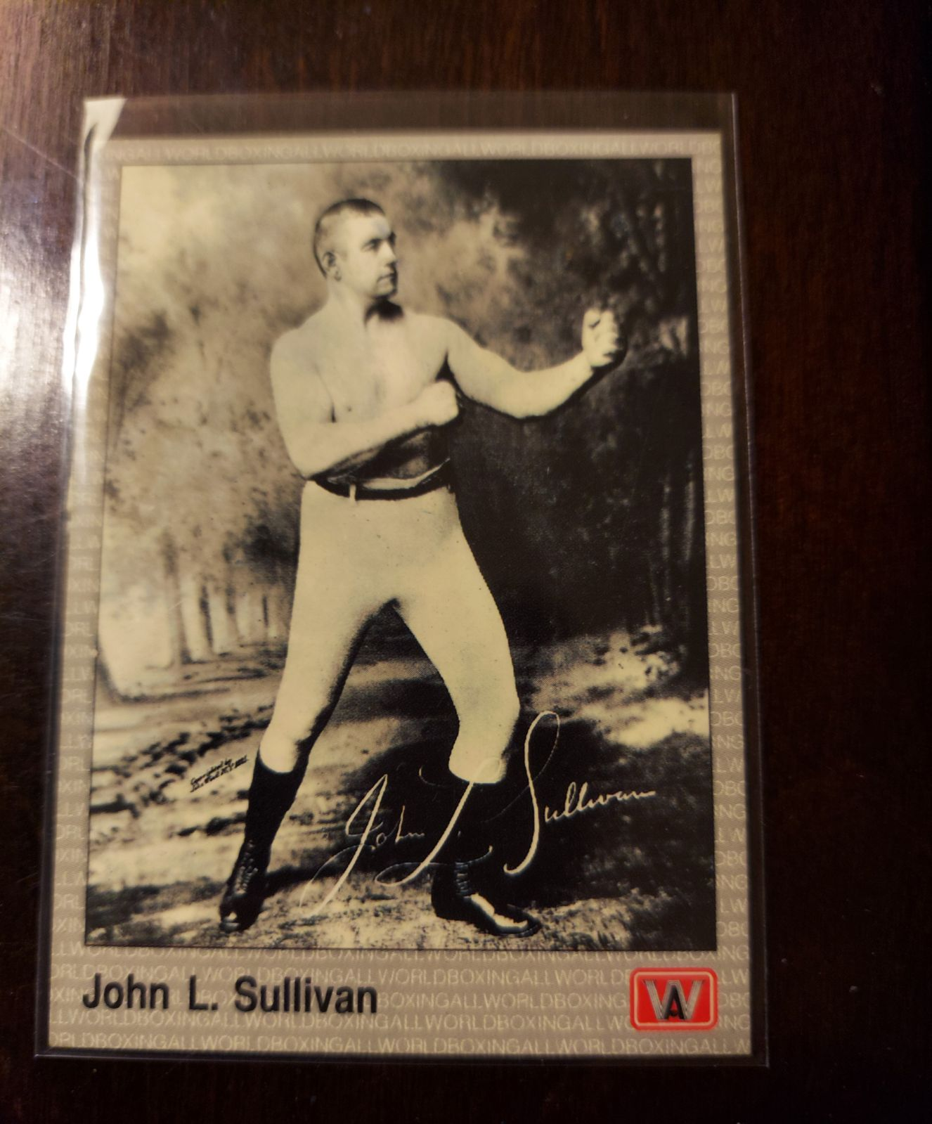 John l sullivan 1990 card