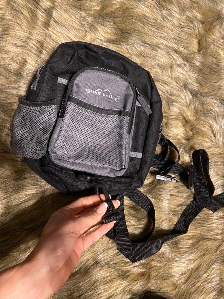 Eddie bauer harness backpack
