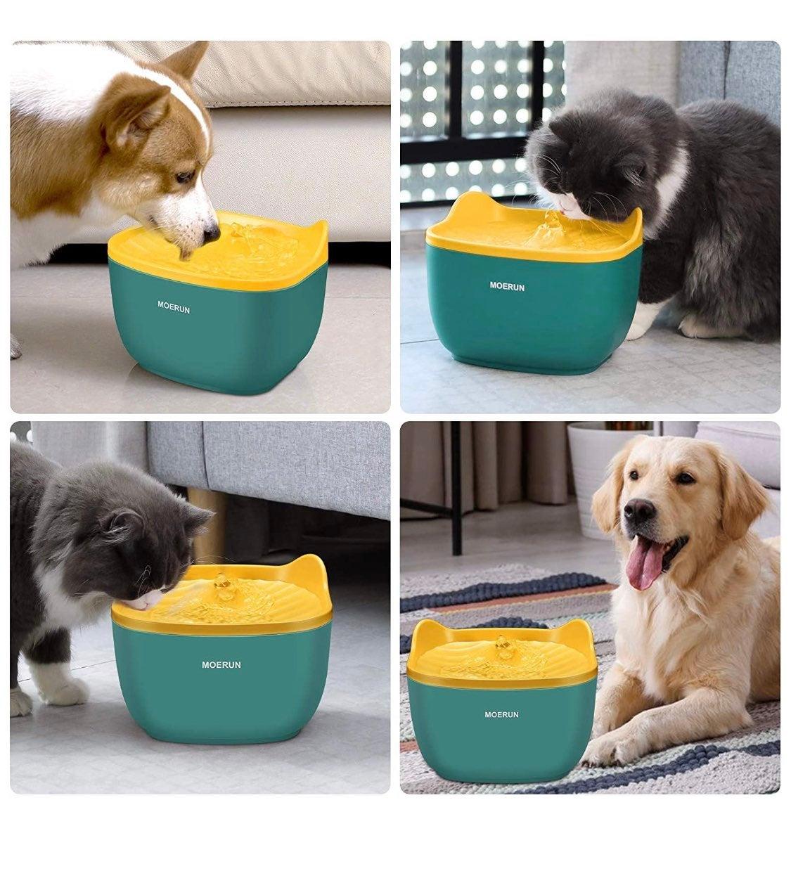 Cat dog pet Water Fountain dispenser