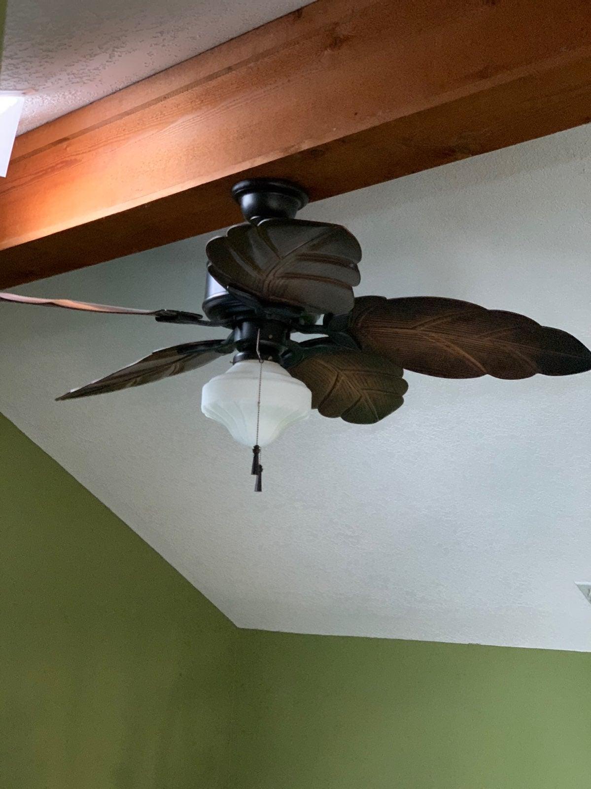Hampton Bay indoor/outdoor ceiling fan