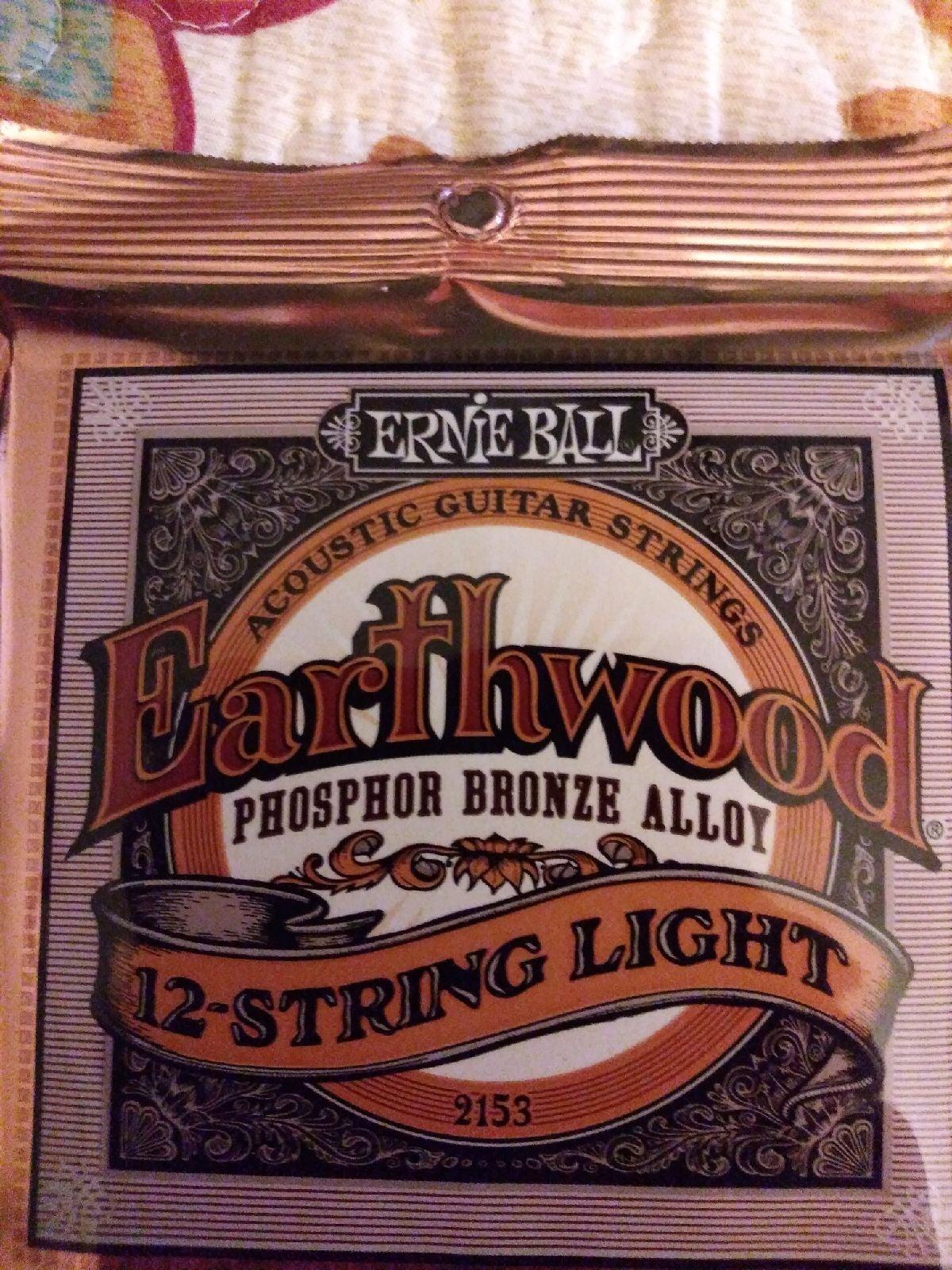 Ernie Ball Earthwood 12-string Light Str