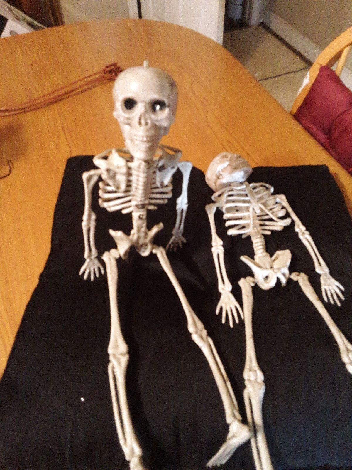 "2 Skeletons 16""Lx5""W"