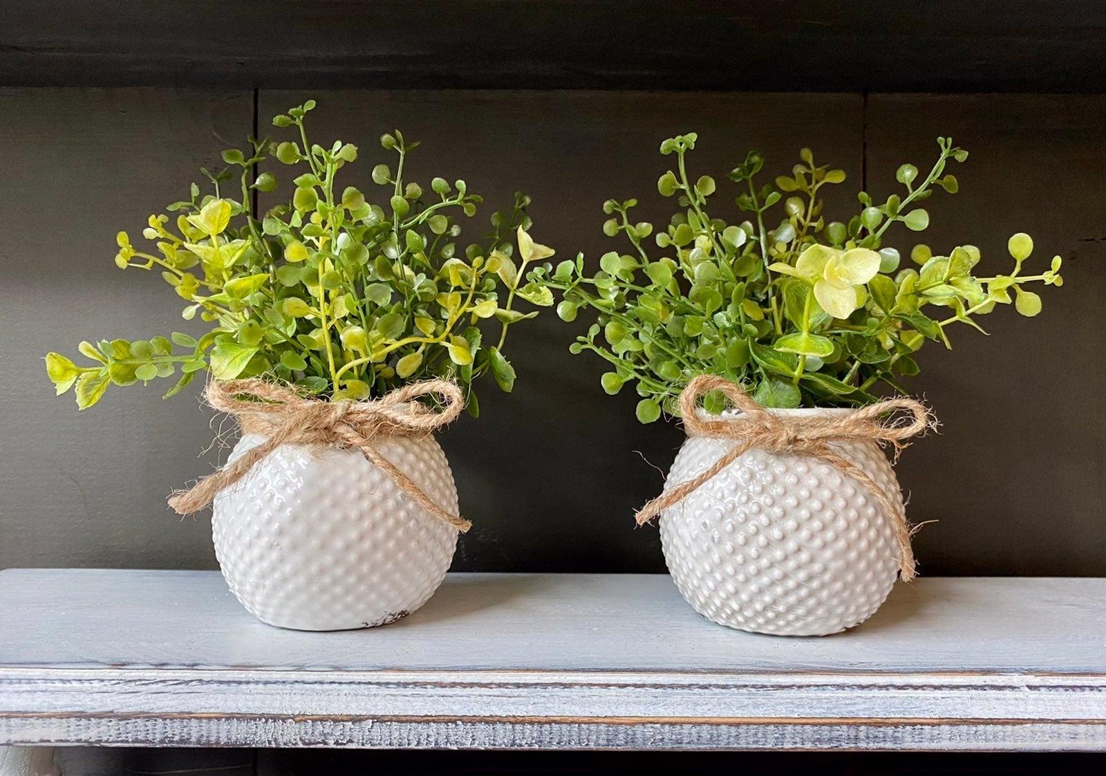 Mini Farmhouse Greenery Arrangements