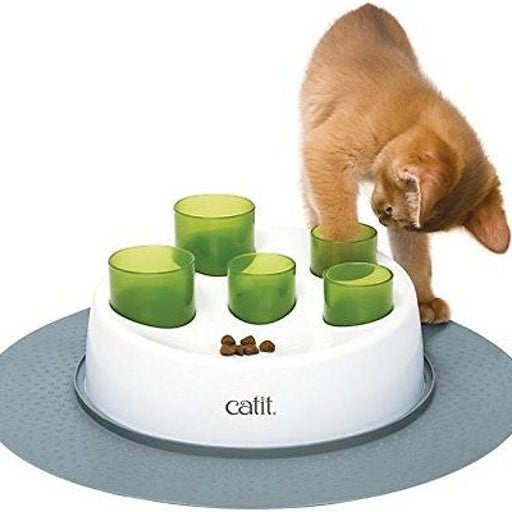 Cat Slow Feeder Bowl