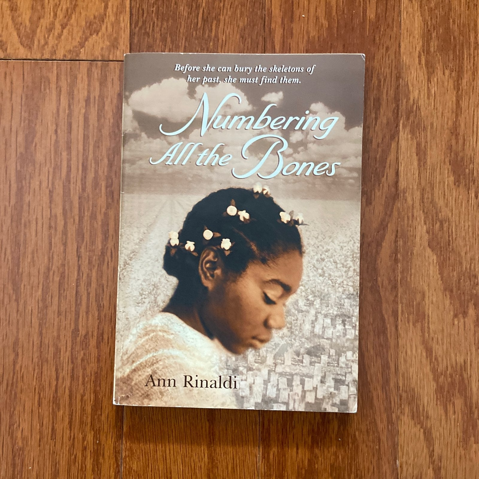 Book: Numbering All the Bones by Ann Rin