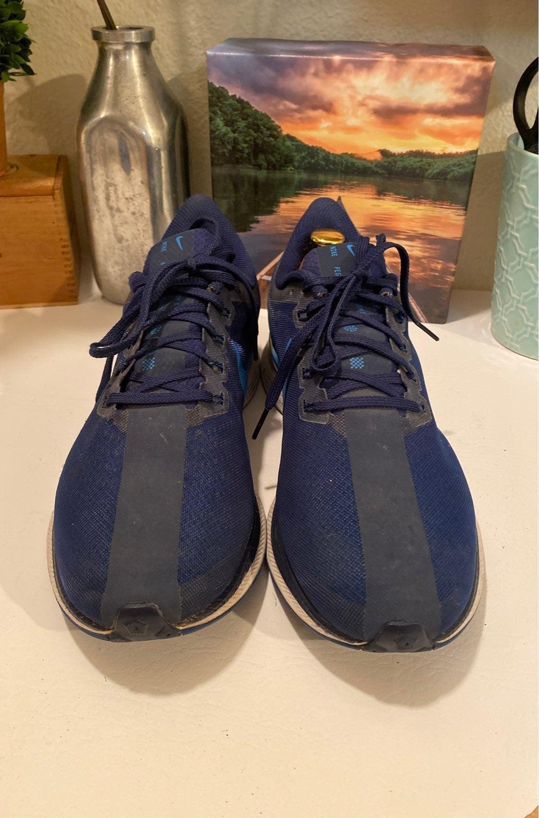 Nike Pegasus Mens Shoes