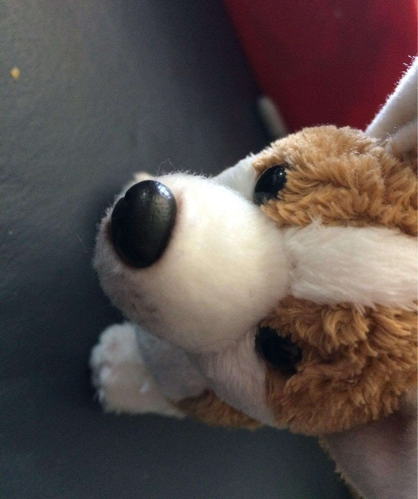 Demdaco Corgi plush Mini Dog Stuffed