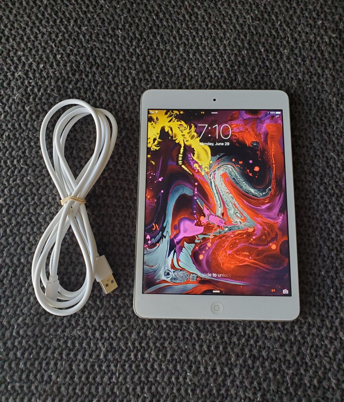 iPad Mini 16 GB (Wifi)