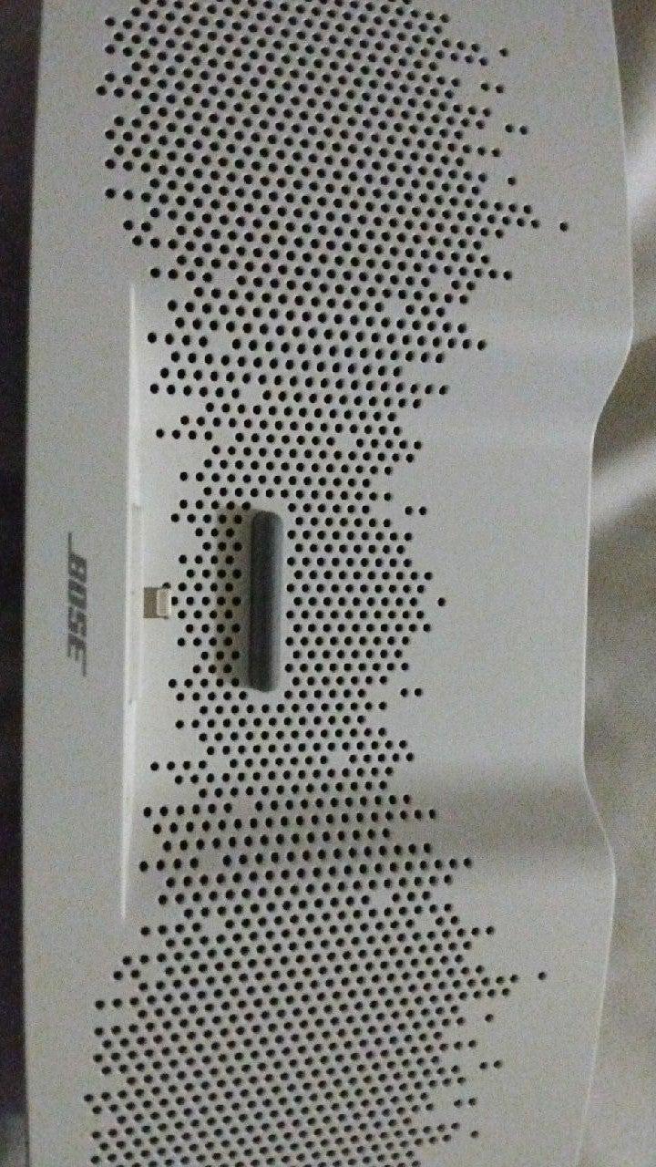 Bose soundock xt speaker