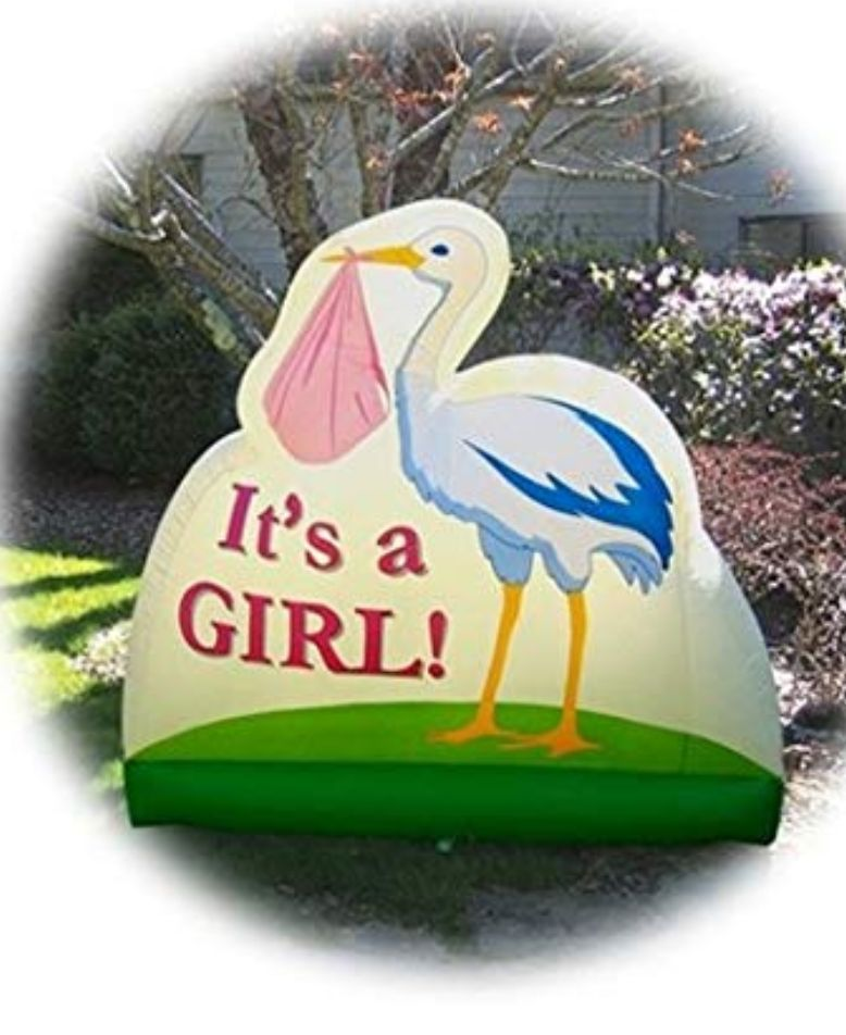 Inflatable Birth Announcement It's A Gir
