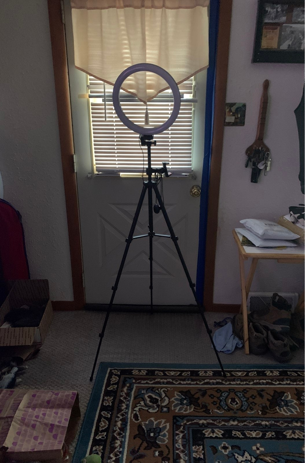 10'' Selfie Ring Light with 51in Tripod