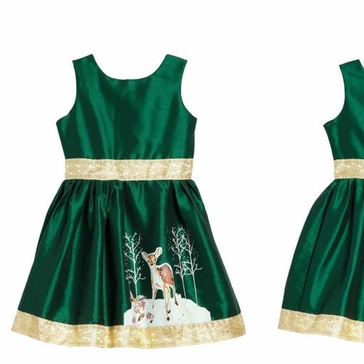 LITTLE LOAVES AND FISHES Christmas dres