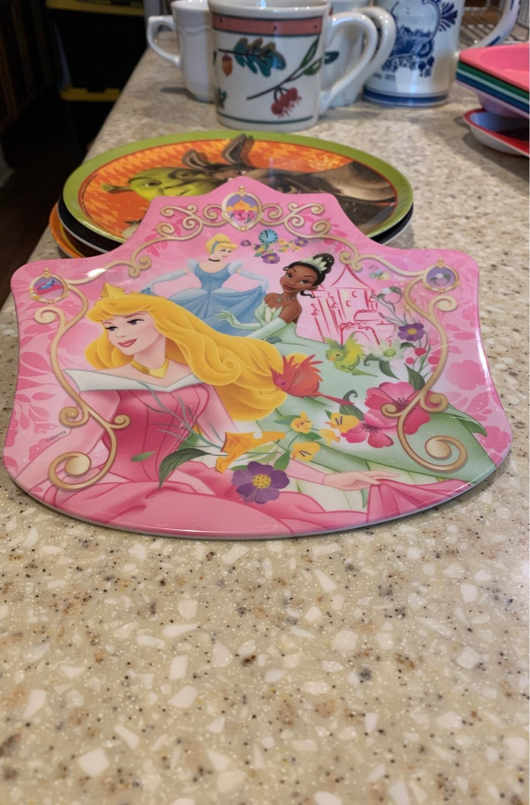 Zak! Disney Princess Plate/dish
