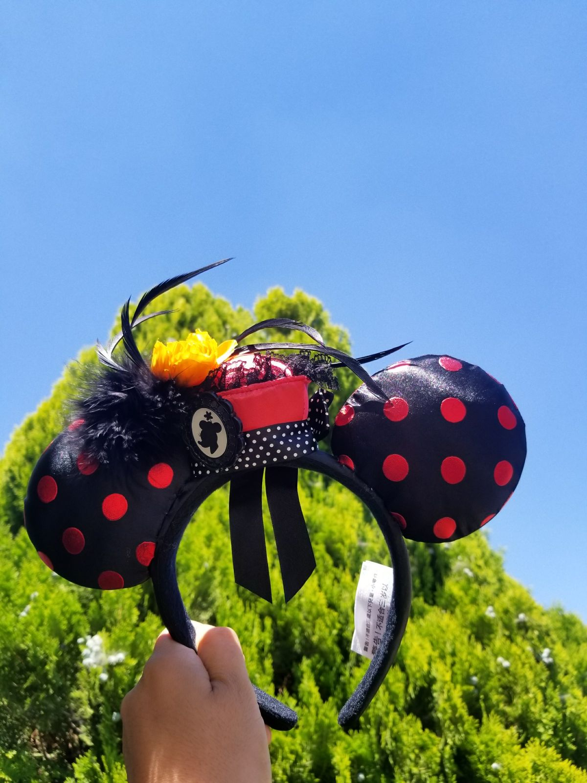 Discontinued Minnie mouse ears