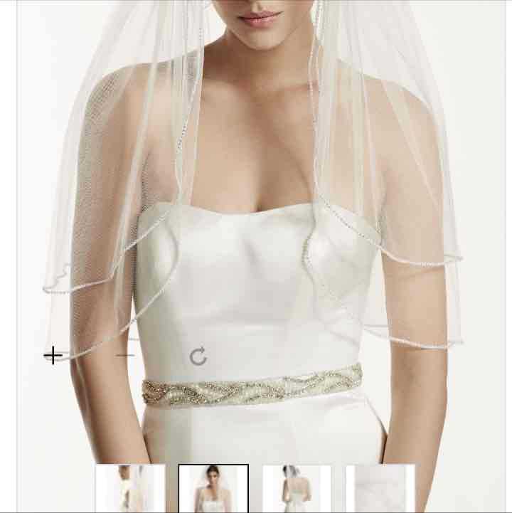 David's Bridal two tier veil