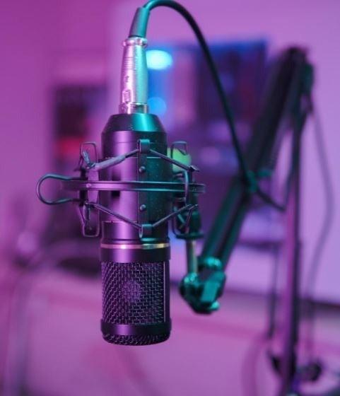 Professional Studio Condenser Microphone