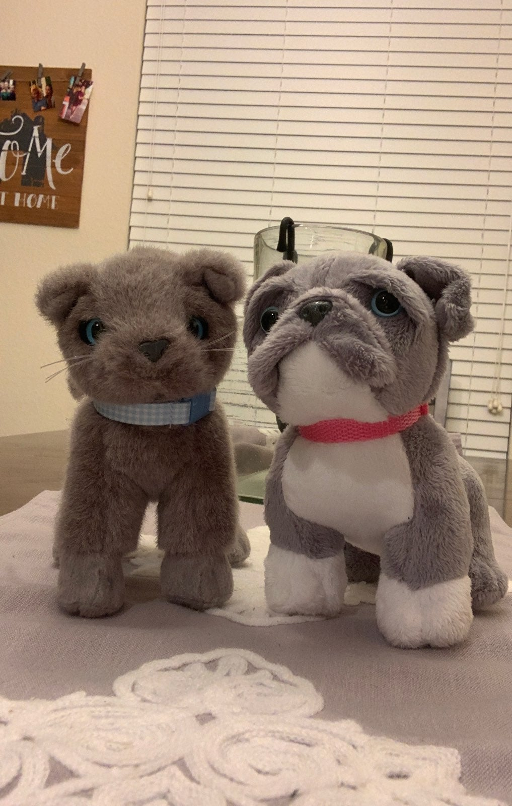 our generation cat and dog plush