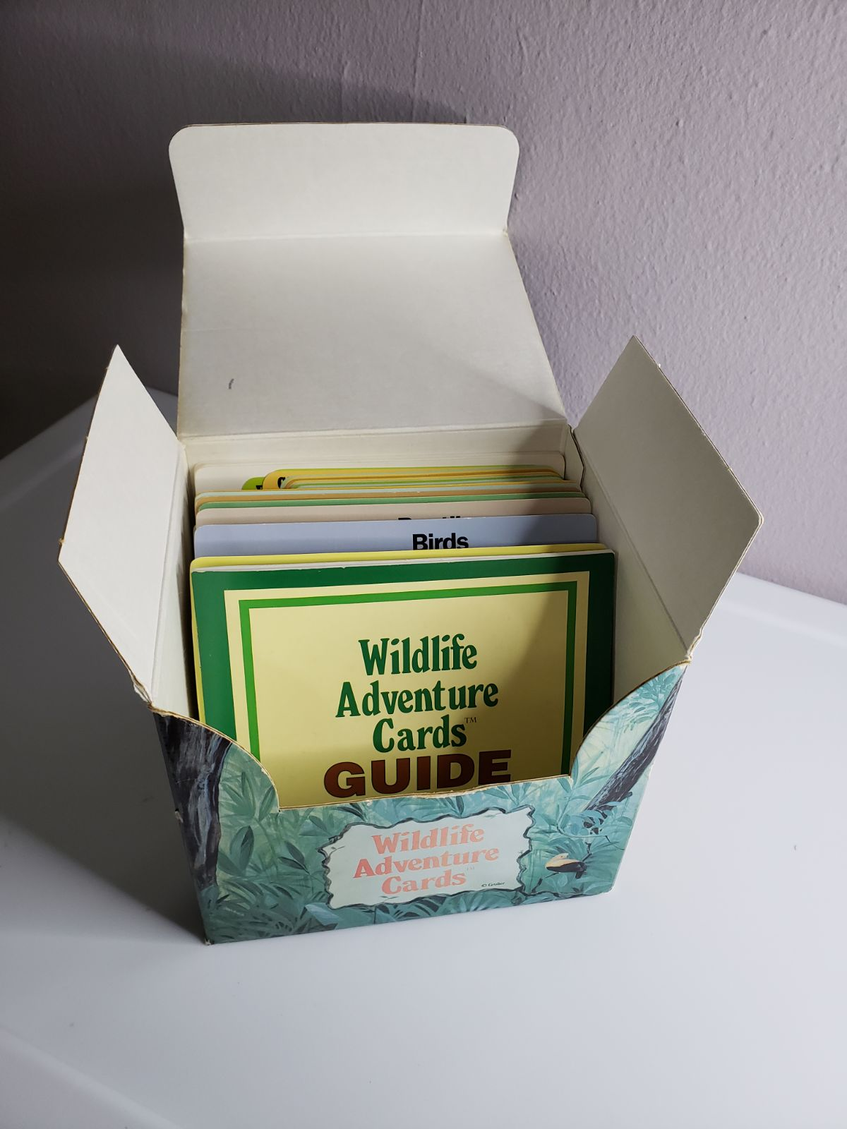 Wildlife Adventure Cards