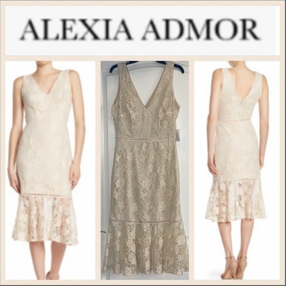 Alexia Admor Kourtney Lace Midi Dress 8
